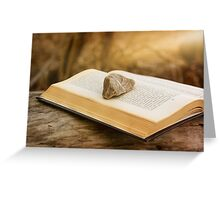 Stone on a Book Greeting Card