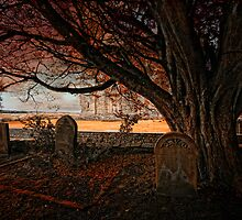 Hearse long gone... by Martina Cross