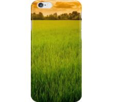 A field of green wheat under a cloudy sky iPhone Case/Skin