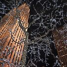 the rockerfeller center by paolo amiotti