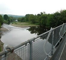 The River Towy, Llangadog by kingfisher