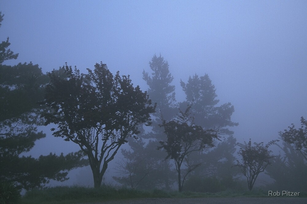 Fade into Fog by Rob Pitzer by Rob Pitzer
