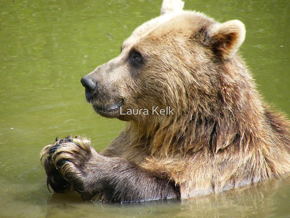 Brown Bear, gone for a dip by Laura Kelk