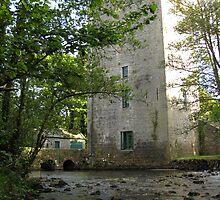 Yeats tower 3 (Ballylee Castle) by John Quinn