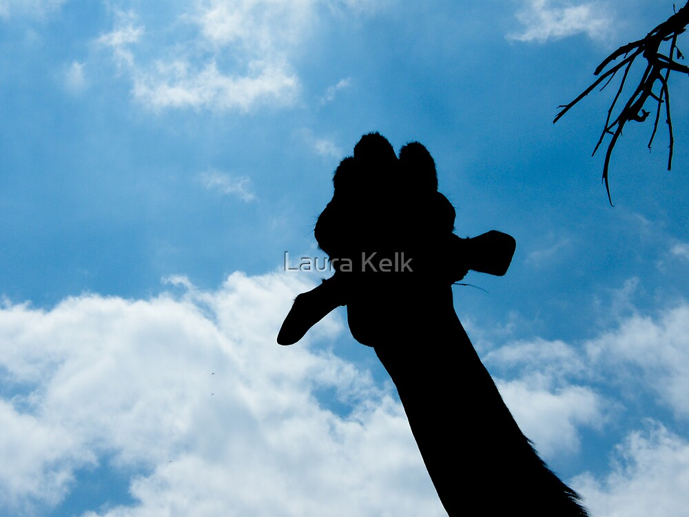 Giraffe by Laura Kelk