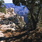 Canyon Shadows-Grand Canyon by Rob Pitzer by Rob Pitzer