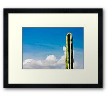 Juan is the Loneliest Number Framed Print