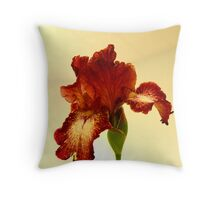 Rich And Decadent Throw Pillow