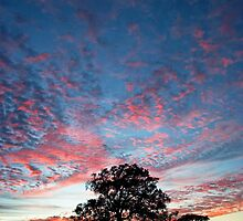 Texas Sunset by Skip Hunt