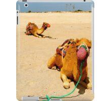 Camels iPad Case/Skin