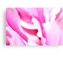 Peony Abstract Canvas Print