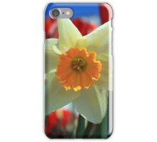 Daffodil & Tulips iPhone Case/Skin