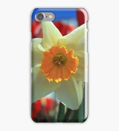 Daffodil & Tulips iPhone Case/Skin