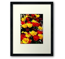 The Many Colors Of The Skagit Valley Framed Print