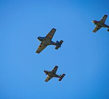 In Formation by Norman Repacholi