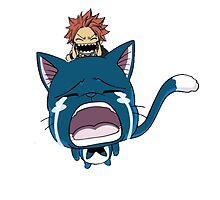 Fairy Tail - Natsu  by artemys