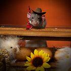 Howdy by strickland