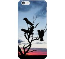 Red-tailed Black Cockatoos in a Desert Sunset iPhone Case/Skin