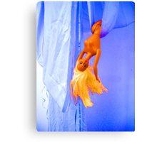 Barbie Swinging Canvas Print