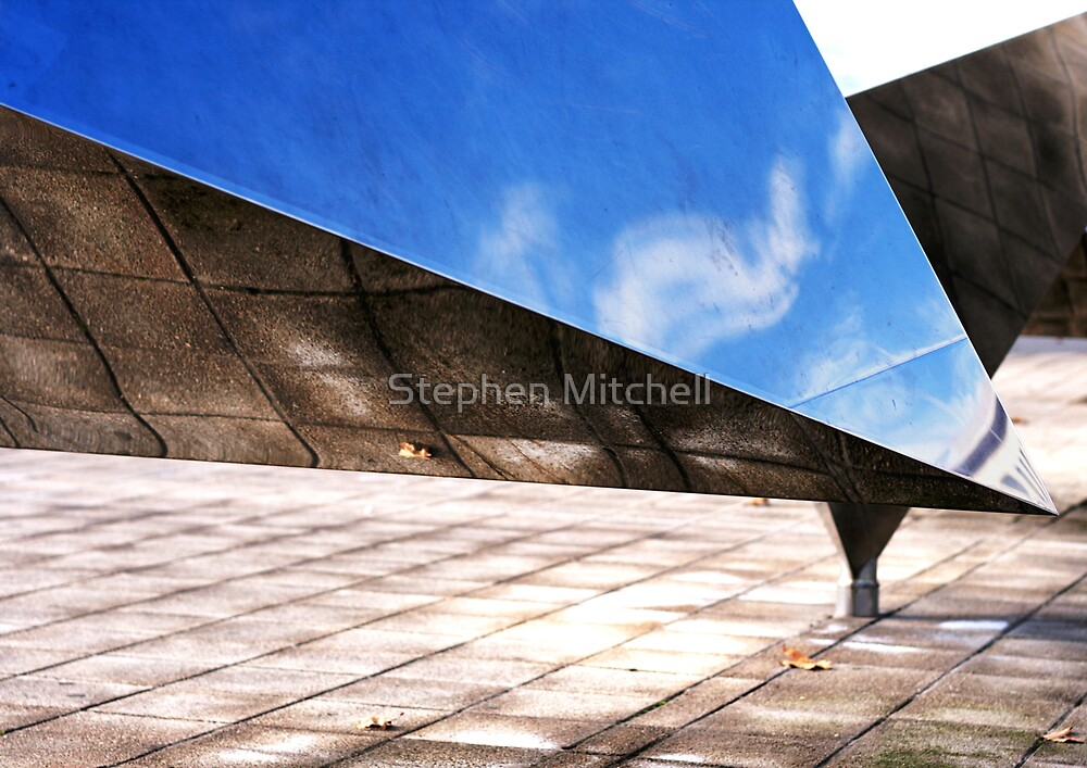 Looking Up Looking Down by Stephen Mitchell