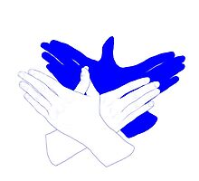 Blue/White Bird Hand Shadow by crook-factory