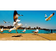 FLIGHT  CONTROL Photographic Print