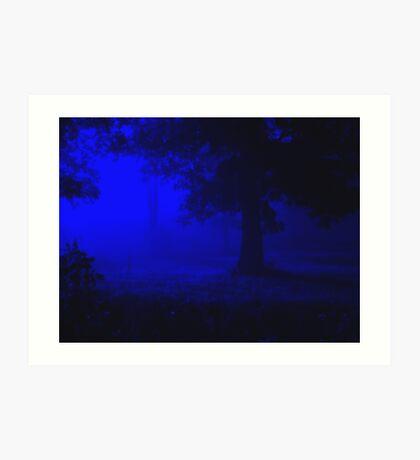 ~Midnight Serenade~ Art Print