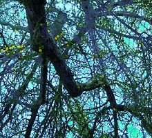 Complex, Cool-Hued Branches Cascading Downward #1 by Ivana Redwine