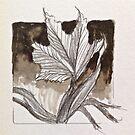maple leaf emerging by evon ski