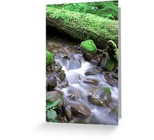 Nature Flow Greeting Card