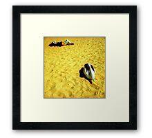 Monkey Mia Pelican Framed Print