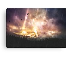 The stars where wrong Canvas Print
