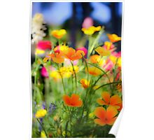 flowering garden. Yellow blooming flowers Poster