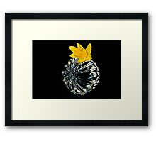 Crystal Collection-Irish Design Framed Print