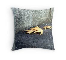 They look lonely there, marooned on a sea of bitumen Throw Pillow