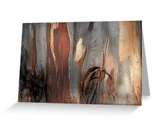 Bark Markings, Penguin, Tasmania, Australia. Greeting Card