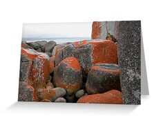 Rocks and Orange Lichen, Binalong Bay, Tasmania, Australia. Greeting Card