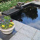 Pool by Jack Ryan