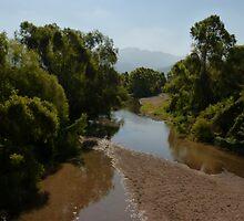 river pitillal  by Bernhard Matejka