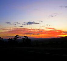Country Sky Delight by Vanessa Barklay