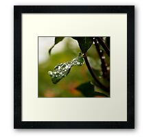 Droplet 4 Framed Print