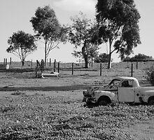 Rusting Holden, Vineyard in McLaren Vale, South Australia by claudiarose99