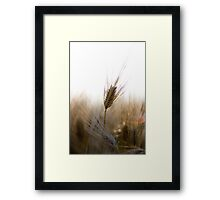 A Successful Harvest Framed Print