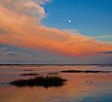Merritt Island by Josh Myers