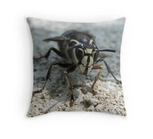 Mr Personality Throw Pillow