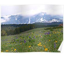 Bighorn Mountains Poster