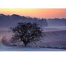 Winter Field Photographic Print