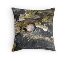 Snails & Barnacles Throw Pillow