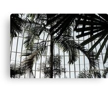 Domed Ceiling With Palms Canvas Print