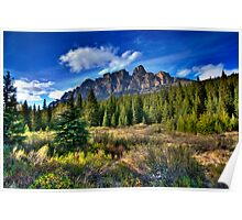 Castle Mountain Poster